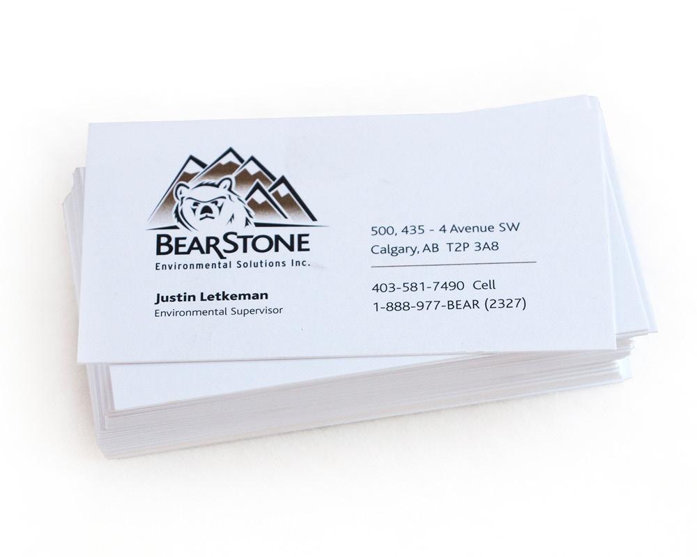 Bearstone logo