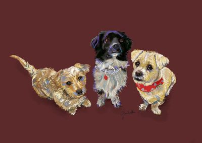 our crew of puppies - illustration by Joni Millar
